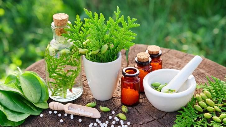 Curso de Homeopatia Popular Integrativa - Etapa 3